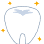 いらすとやの歯のイラストです。アレルギーの心配のない白い歯、ジルコニア。美容、整形を考えてる女性にもおすすめ!