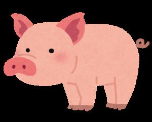 豚肉にはビタミンBが豊富に含まれています!